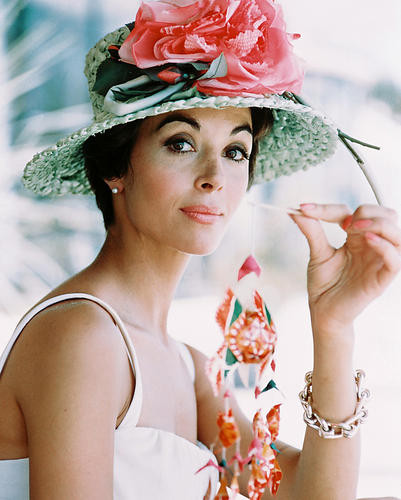 This is an image of 247620 Dana Wynter Photograph & Poster