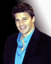 This is an image of 257780 David Boreanaz Photograph & Poster