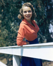This is an image of 257951 Janet Leigh Photograph & Poster