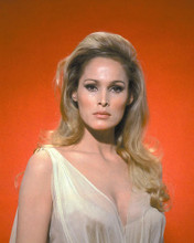 This is an image of 262696 Ursula Andress Photograph & Poster