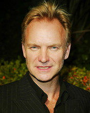 This is an image of 262967 Sting Photograph & Poster