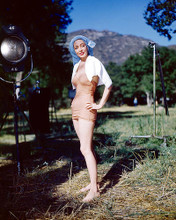 This is an image of 262987 Marie Windsor Photograph & Poster
