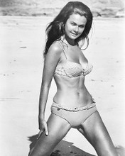 This is an image of 174004 Imogen Hassall Photograph & Poster