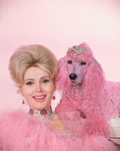 This is an image of 259009 Zsa Zsa Gabor Photograph & Poster