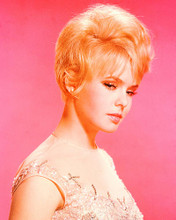 This is an image of 259438 Joey Heatherton Photograph & Poster