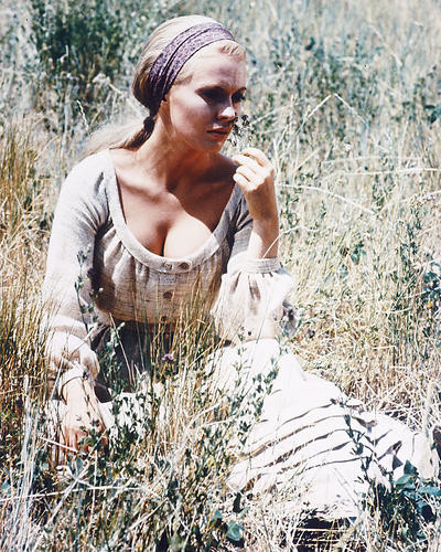 This is an image of 259486 Virna Lisi Photograph & Poster