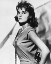 This is an image of 175101 Gina Lollobrigida Photograph & Poster