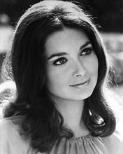 This is an image of 175155 Suzanne Pleshette Photograph & Poster