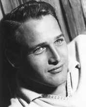 This is an image of 175784 Paul Newman Photograph & Poster