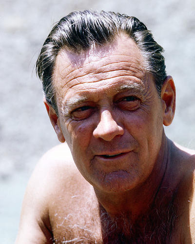 This is an image of 260056 William Holden Photograph & Poster