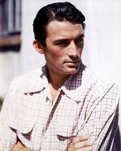 This is an image of 263812 Gregory Peck Photograph & Poster