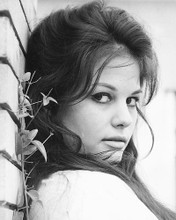 This is an image of 176177 Claudia Cardinale Photograph & Poster