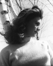 This is an image of 179011 Lee Remick Photograph & Poster