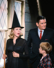 This is an image of 263969 Bewitched Photograph & Poster