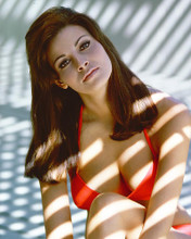 This is an image of 264159 Raquel Welch Photograph & Poster
