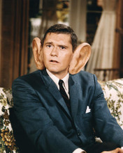 This is an image of 264165 Dick York Photograph & Poster