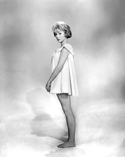 This is an image of 186099 Janet Leigh Photograph & Poster