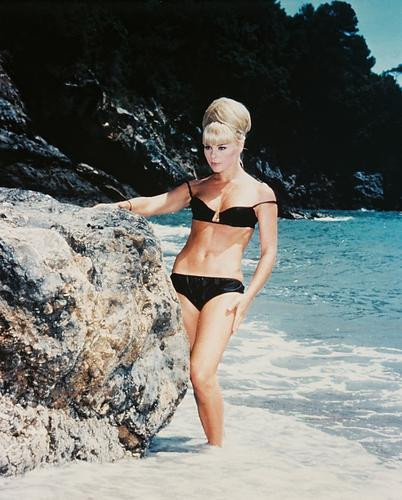 This is an image of 25013 Elke Sommer Photograph & Poster