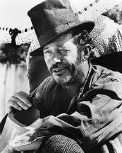 This is an image of 186272 Warren Oates Photograph & Poster