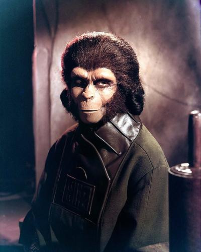 This is an image of 271756 Planet of the Apes Photograph & Poster