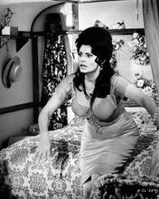 This is an image of 186604 Gina Lollobrigida Photograph & Poster