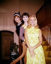 This is an image of 272207 Bewitched Photograph & Poster