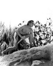 This is an image of 187743 Tarzan Photograph & Poster