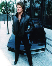 This is an image of 274587 David Hasselhoff Photograph & Poster