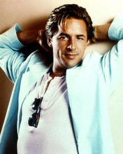 This is an image of 274605 Don Johnson Photograph & Poster