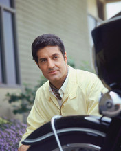 This is an image of 274909 Peter Lupus Photograph & Poster