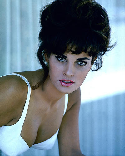This is an image of 275966 Raquel Welch Photograph & Poster