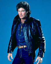 This is an image of 276031 David Hasselhoff Photograph & Poster