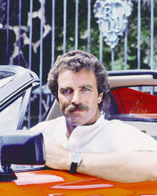 This is an image of 277105 Tom Selleck Photograph & Poster