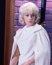 This is an image of 278103 Stella Stevens Photograph & Poster