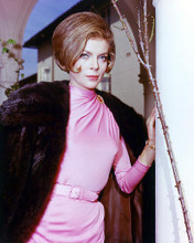 This is an image of 278215 Barbara Bain Photograph & Poster