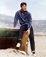 This is an image of 278323 Richard Chamberlain Photograph & Poster