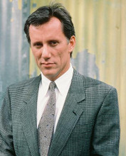 This is an image of 223752 James Woods Photograph & Poster