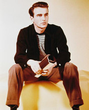 This is an image of 230021 Montgomery Clift Photograph & Poster
