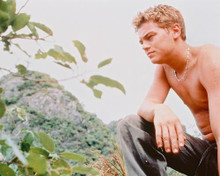 This is an image of 237538 Leonardo Dicaprio Photograph & Poster