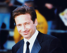 This is an image of 240428 David Duchovny Photograph & Poster