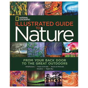 NGEO ILLUSTRATED GT NATURE