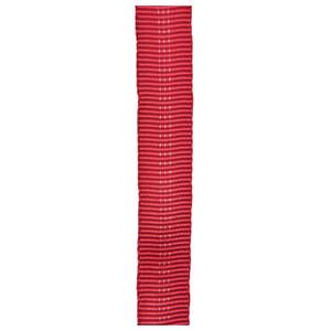 "1""X300' UIAA RED TUBE WEB"
