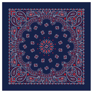 BANDANA PAISLEY BLUE/RED