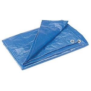 BLUE POLY TARP 6' X 8'