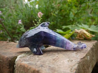 Green Blue Fluorite Dolphin (1407503044)