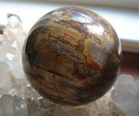 Petrified Wood Sphere (8175)