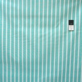 Verna Mosquera PWVM112 Rosewater Cabana Stripe Mint Fabric By Yd