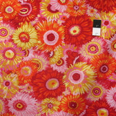 Philip Jacobs PWPJ079 Zany Hot Cotton Fabric By The Yard