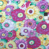 Philip Jacobs PWPJ079 Zany Soft Cotton Quilting Fabric By Yard