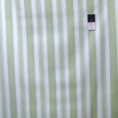 Tanya Whelan PWTW074 Sunshine Roses Stripe Green Cotton Quilting Fabric By Yard